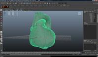 第5回:心臓シミュレーションを可視化する(後編)