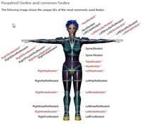 第10回:Autodesk Human IKはシンプルです