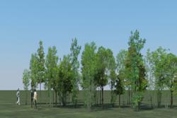 8_tree_billboard_02.jpeg