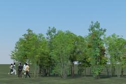 8_tree_billboard_03.jpeg