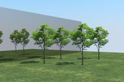 8_tree_billboard_16.jpeg