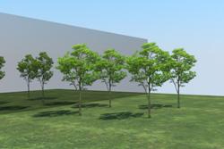 8_tree_billboard_17.jpeg