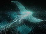 Stingray for Game イントロダクションセミナー